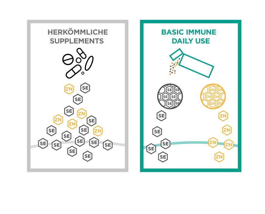 basic immune infografik